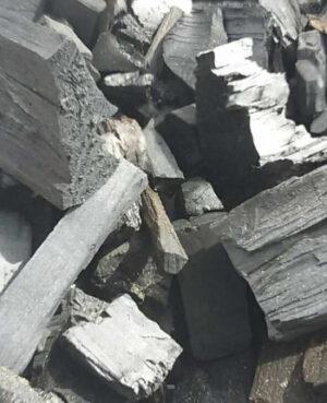 Birch-wood-charcoal