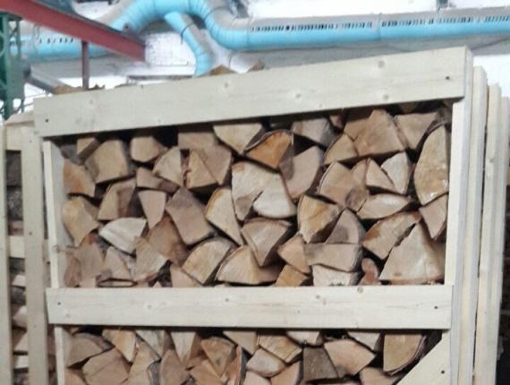buy birch firewood