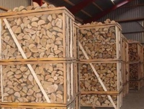 oak and beech firewood